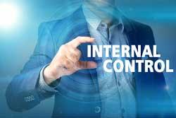 Internal Control Image